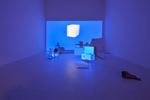 MoMAPS1 New Pictures of Common Objects